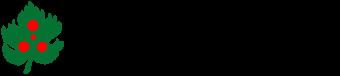 RIONE DEL PALLO'
